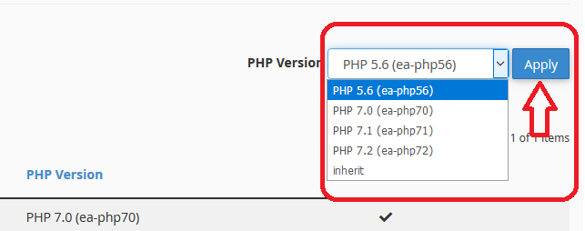 PHP version switch